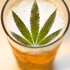 Weed-infused beer is a real thing, and we tell you how to make it