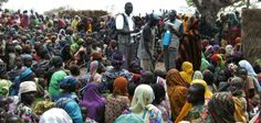 Tom Garba The disturbing suffering on the IDPs in Madagali LGA of Adamawa state has pushed the lawmaker representing the area in the state house of Assembl