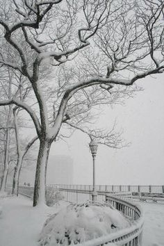 Brooklyn heights promenade, NYC - 50 Travel 50 Nature