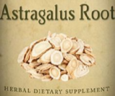 ASTRAGALUS ROOT Herb Tincture for Natural Deep Immune System Liver Kidney and Lung Support