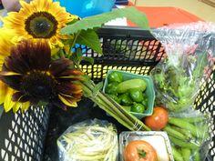 Aug 28, 2012  veggie box