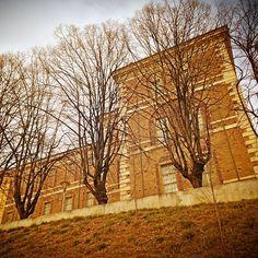 """Castello di Rivoli. Tra queste mura visse il duca Emanuele Filiberto non potendo stabilirsi a Torino, e per questo frangente il castello venne rimodernato dal Vittozzi ed è di questo periodo la realizzazione della famosa  """"Manica Lunga"""", destinata ad essere la pinacoteca dei Savoia e che è, oggi, l'unico edificio seicentesco visibile.(cit.Camperarcobaleno)"""