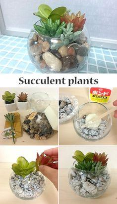≪100均DIY≫夏にピッタリ♪多肉フェイクグリーンを涼しげに寄せ植えしてみよう!