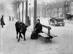 France. An elderly woman who fled the warzone with her cow, sits on a bench in Amiens, March 28, 1918 WWI