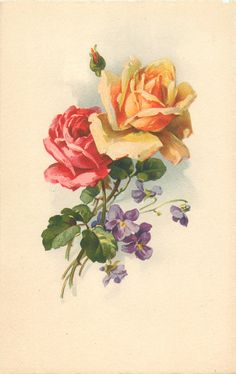 one red & one yellow/orange fully blown roses, and one red bud, purple violets