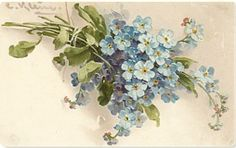 Google Image Result for http://mangelsdesigns.com/frames/postcards_archivos/Vintage_postcard_floral2.jpg