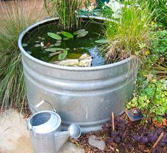 Galvanized stock tanks make excellent containers for water garden features. Already sealed they also give a nice rustic appearance for country landscapes. For a less-rustic look, spray paint your favorite color on the exterior. www.ContainerWaterGardens.net.