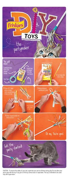DIY do it yourself cat toy, easy to make cat toy idea by Friskies. Totally doing this! My cat runs a round with empty bags in their mouths, so why not make a toy out of it?