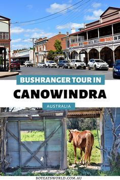 Are you looking for fun and unique places to go in Australia? Try the interesting Blind Freddy's Bushranger tours in Canowindra. Discover why it's one of the top things to do in Canowindra, Australia and why your family will love it too! I tours in Australia I Australia travel I where to go in Australia I family activities in Canowindra I what to do in Canowindra I #Canowindra #Australia Road Trip With Kids, Family Road Trips, Family Travel, Travel Expert, Travel Tips, Kakadu National Park, Australia Travel Guide, Toddler Travel, Travel Pictures