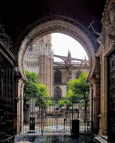 Barcelona Cathedral, Big Ben, Spain, Building, Travel, Sevilla, Viajes, Sevilla Spain, Buildings