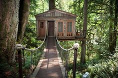 The Tree house Hotel, Washington | The coolest hotel in every state (and DC!)| Thrillist
