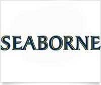 Seaborne Airlines| Gold Sponsor  #STXFWE #VisitStCroix #STXNice