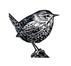 Wren Original Lino Print Illustration Etsy - Wren Is An Original Hand Pulled Linoprint This Is An Open Edition Of Prints Each Print Is Signed The Print Is Available On Its Own Or Presented In A Inch Professionally Cut Soft White Mount Woodcut Art, Linocut Prints, Linoprint, Wood Engraving, Gravure, Woodblock Print, Illustrations, Printmaking, Block Prints