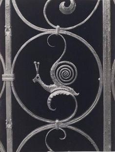 Snail scroll iron gate detail. Circa 1930-40's.