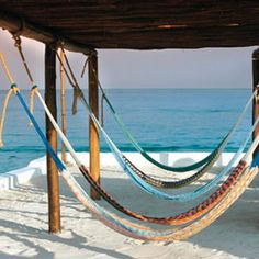…relax in a hammock while enjoying the gentle breeze and the blue Caribbean waters, at Fiesta Americana Cozumel