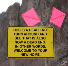 Your character(s) is on a road trip in the mountains when they encounter this sign. Sure enough, they are stranded on a 20 foot stretch of road in the middle of nowhere. On three sides of the road there is just a drop off. On the fourth, a rocky cliff stretching up into the sky. What do they do?