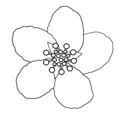 Die 90 Besten Bilder Von Cherry Blossoms Wonderful Flowers
