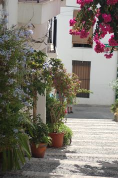 Salobreña is another beautiful white village along the coast of the Costa Tropical, Granad. Learning Spanish, Spanish Food, Tropical, Beautiful Streets, Country Scenes, Blended Learning, Andalusia, Best Location, Granada