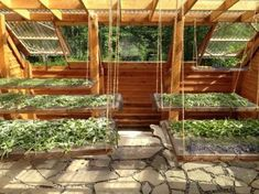 Small-Scale Medicinal Herb Farming: A (Very) Personal Journey Pictured: Greenhouse Turned Drying House The Farm, Outdoor Greenhouse, Greenhouse Plans, Green House Design, Agriculture, Mother Earth News, Homestead Survival, Urban Farming, Farming Farming
