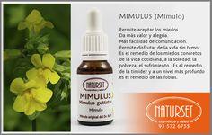 Mimulus - Flores de Bach de Naturset