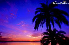 Central Florida Sunset - Polk County, Florida
