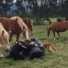 Cuando compartes con tus maestros... con caballos hoy. Conectándonos con lo que más nos gusta!@blancamerysanchezcoaching  #happyoucolombia #coachingconcaballos #felicidad #amigos