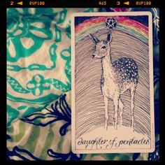 THE WILD UNKNOWN Tarot: daughter of pentacles