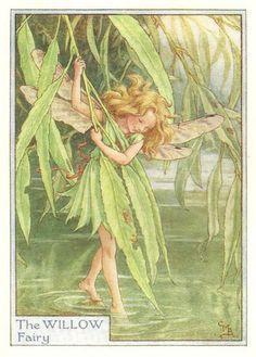 http://www.wellandantiquemaps.co.uk/lg_images/The-Willow-Fairy.jpg