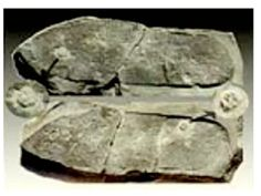 """the impression of a sandaled shoe crushing a trilobite-it would have been made 300 to 600 million years ago and would be sufficient either to overturn all conventionally accepted ideas of human and geological evolution or to prove that a shoe-wearing biped from another world had once visited the planet."" Found in Utah"