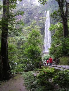 Waterfall gunung kidul yogyakarta