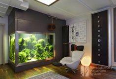 Diskus Aquarium - Revolutionary Aquarium System