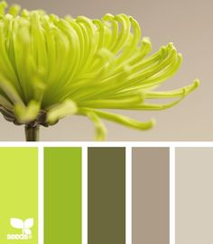 spring brights #Color Palettes