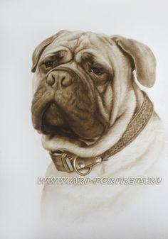 Рисунок собаки. Изображение собаки