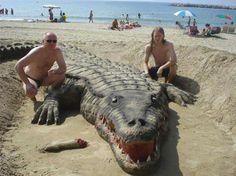 Latest Crocodile Sand Art