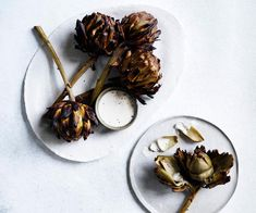 Artichokes with Taleggio sauce recipe - For Taleggio sauce, bring milk to the boil in a saucepan. Add the cheese, stir until it begins to melt, then blend with a hand-held blender until smooth Baked Artichoke, Artichoke Recipes, Slow Roast Lamb, Unique Recipes, Ethnic Recipes, Herb Salad, Sauce Recipes, Artichokes, Food To Make