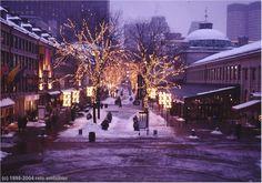 Harvard University in Christmas Time