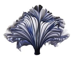 New Blossoming Book Sculptures by Cara Barer  Posted by alice on July 24, 2012 at 12:00pm  View Blog: http://www.mymodernmet.com/profiles/blog/list?user=2udpd7cec1v2w
