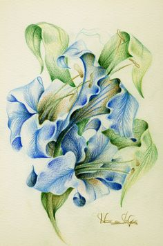 Items similar to original drawing from my collection De-lirios 18 x 26 cm on Etsy Pencil Colour Painting, Colored Pencil Artwork, Colored Pencils, Watercolor Sketchbook, Artist Sketchbook, Oil Pastel Drawings, Colorful Drawings, Botanical Flowers, Botanical Prints