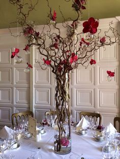 Dramatic contorted hazel trees with red orchids