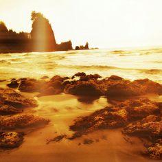 2nd Beach on coast of Washington