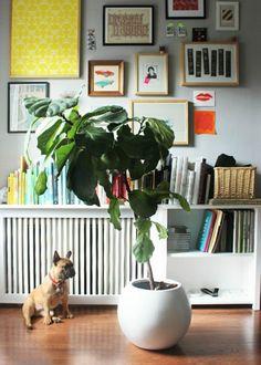 cacher-radiateur castorama, et le cacher-radiateur fonte pour le salon moderne