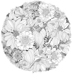 Floribunda: A Flower Coloring Book Make your world more colorful with free printable coloring pages from italks. Our free coloring pages for adults and kids. Adult Coloring Book Pages, Flower Coloring Pages, Mandala Coloring, Colouring Pages, Coloring For Kids, Coloring Sheets, Coloring Books, Flower Sketches, Floral Drawing