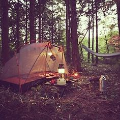 Set up camp.