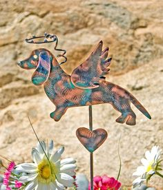 "Dachshund stake metal garden art pet memorial copper angel decoration is designed for indoors or outdoors. This adorable wiener dog memory marker would make a lovely heartfelt gift for any occasion. This precious dog is a favorite breed among Etsy friends. Order now to guarantee availability. Artist note - #3 facing left looking at angel dog. ITEM DETAILS: ♥ Viewing photos - hover over first photo and click on arrow to see other photos available. ♥ Stake overall measures approximately 18""…"