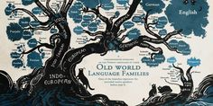 The tree of languages.