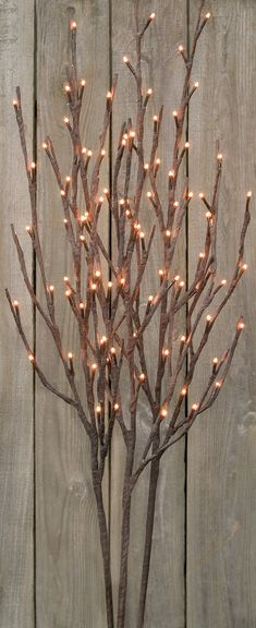 1000 images about twig lights on pinterest branches. Black Bedroom Furniture Sets. Home Design Ideas