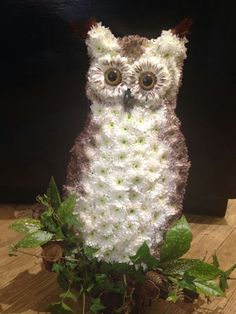 Owl tribute by the joy of Flowers Bourne