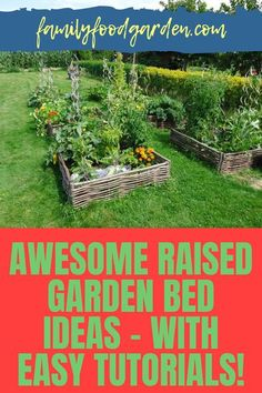 With the many benefits of erecting a raised garden bed, you want to check out Family Food & Garden's comprehensive guide on this topic. The variety of resources that can be used are many. There are several materials to choose from in building a raised garden bed. With so many choices available, this is an opportunity you won't want to pass up. Our step-by-step instructions will make the gardening experience easy. Read more. #raisedgardenbed #diyraisedgarden #raisedgarden Raised Garden Bed Plans, Building A Raised Garden, Healthy Fruits And Vegetables, Garden Planning, Step By Step Instructions, Vegetable Garden, Family Meals, Opportunity, Choices