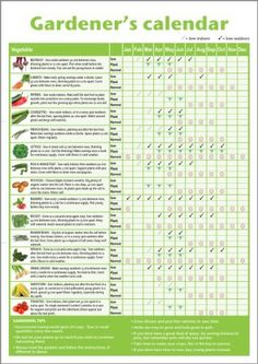Homemade* A3 novice gardener's/beginner's vegetable growing gardening calendar (folded to A4), ideal small gift for mother's day, father's day, classrooms or schools offering horticultural lessons NOT LAMINATED by 123 Web Art, http://www.amazon.co.uk/dp/B0054JDPOK/ref=cm_sw_r_pi_dp_YTndtb1VEMCQS/277-9165292-1728923