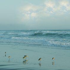 Nautical Ocean Beach Art Ocean Landscape by lucysnowephotography, $20.00